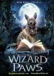 Волшебные лапы / Удивительный волшебник из Лапы