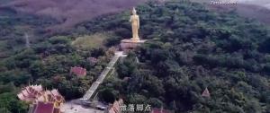 Возвращение китайских миротворцев: война волков