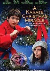Рождественское чудо в стиле карате