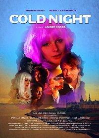 Холодная ночь