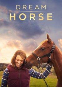Лошадь мечты