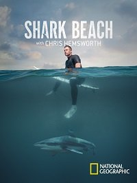 Акулий пляж с Крисом Хемсвортом